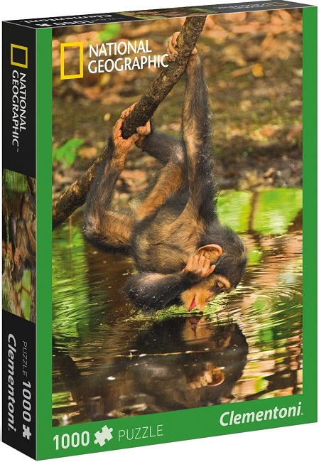 1000 NATIONAL GEOGRAPHIC, Chimpancé